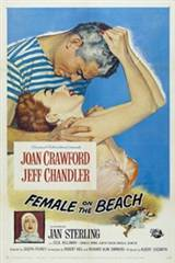 Female on the Beach (1955) Movie Poster