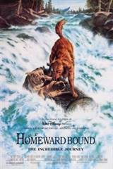 Homeward Bound: The Incredible Journey Movie Poster