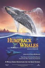 Humpback Whales Movie Poster