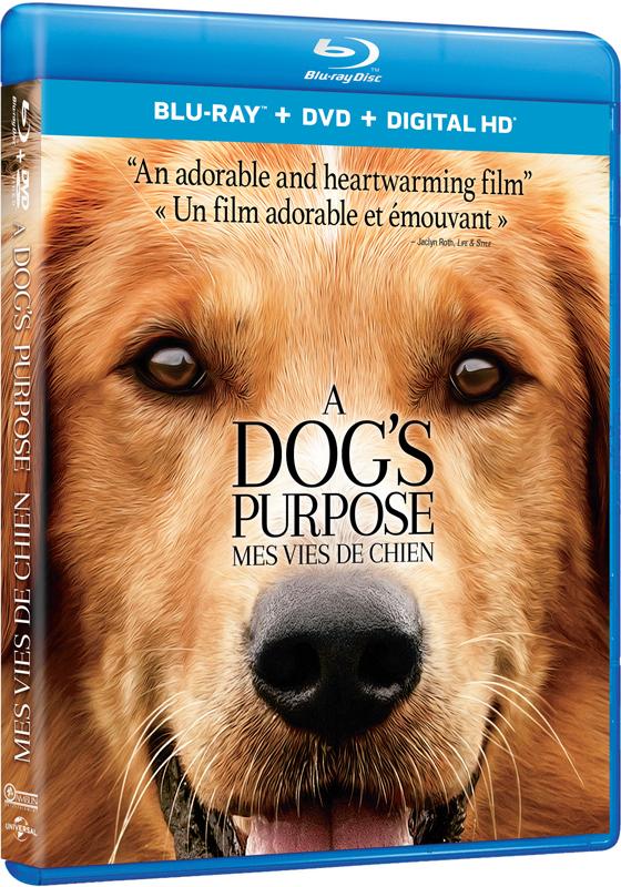 A Dog S Purpose Movie Times