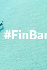 #FinBanNow