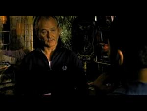 BROKEN FLOWERS Trailer Video Thumbnail