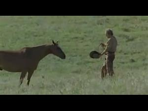 OPEN RANGE Trailer Video Thumbnail