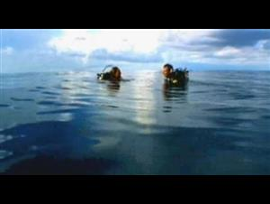 open-water Video Thumbnail