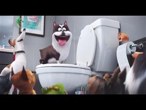 The Secret Life of Pets - Super Bowl TV Spot Video Thumbnail