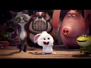 "The Secret Life of Pets movie clip - ""Snowball's Accident"" Video Thumbnail"