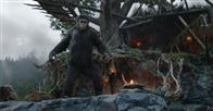 Dawn of the Planet of the Apes Photo 5