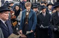 Fantastic Beasts and Where to Find Them Photo 18
