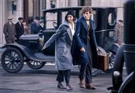 Fantastic Beasts and Where to Find Them Photo 40