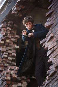 Fantastic Beasts and Where to Find Them Photo 59