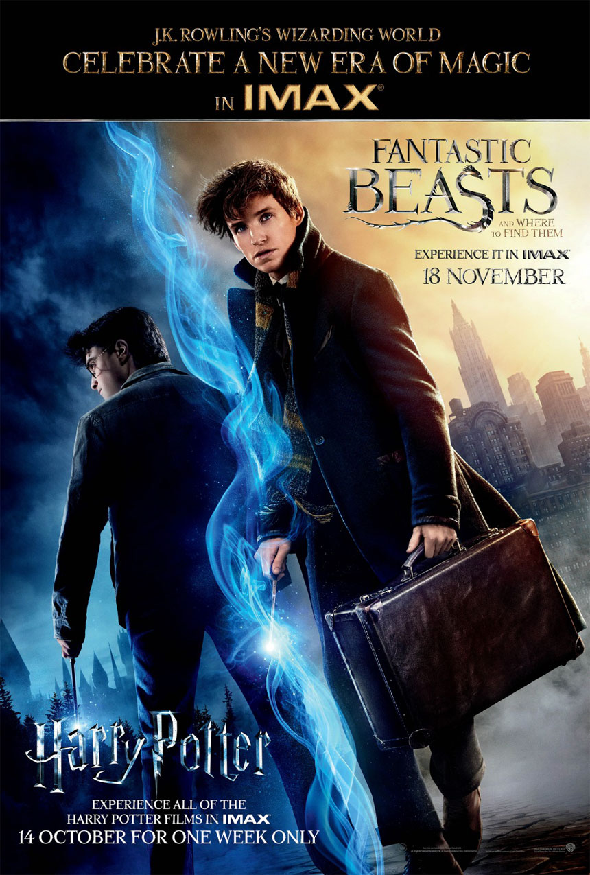 Fantastic Beasts and Where to Find Them Photo 17 - Large