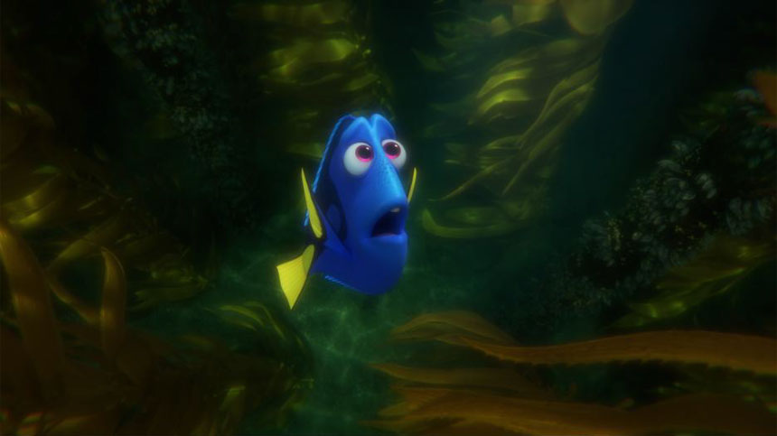 Finding Dory Photo 9 - Large