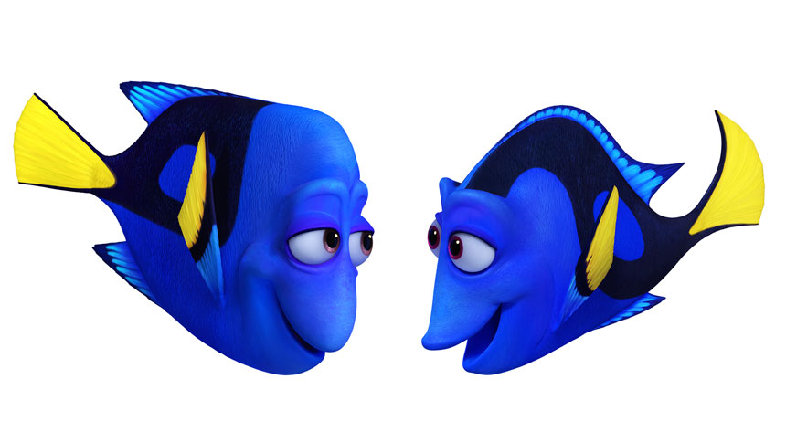 Finding Dory Photo 10 - Large
