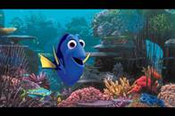 Finding Dory Photo 16