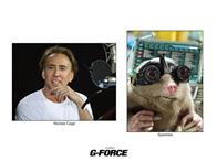 G-Force Photo 19