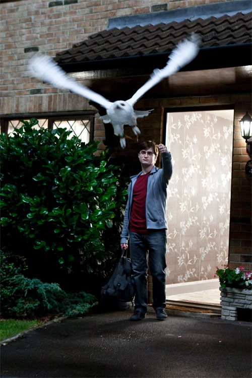 Harry Potter and the Deathly Hallows: Part 1 Photo 61 - Large