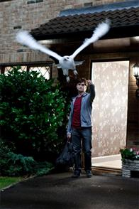 Harry Potter and the Deathly Hallows: Part 1 Photo 61