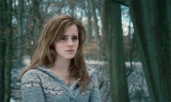 Harry Potter and the Deathly Hallows: Part 1 Photo 34 - Large